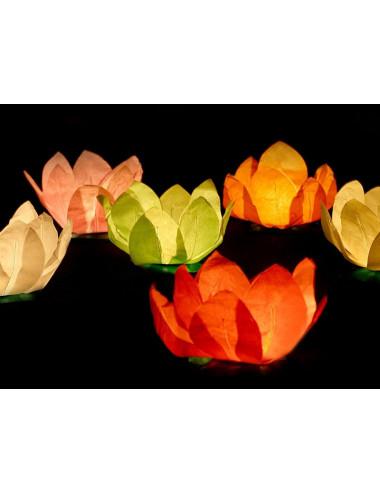 Lampiony pływające