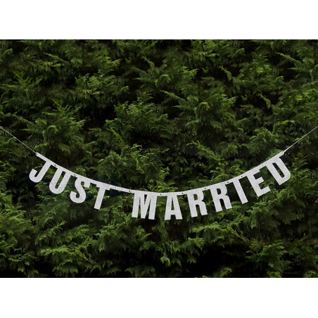 Baner napis Just Married